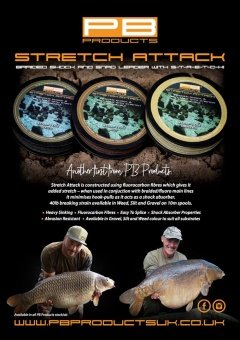 Лидер - амортизатор PB Products STRETCH ATTACK / 40lb / 10m